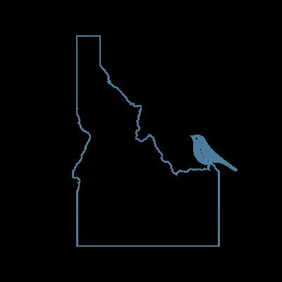 Idaho-Bluebird-health